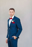 Serious Groom agaist gray wall. Portait of a young handsome man in suite. Close up of a gorgeous guy on gray background stock images