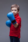 Serious handsome boy posing in boxing gloves Stock Photos