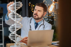Serious intelligent researcher studying genetics. Modern science. Serious intelligent hard working researcher sitting at the table and looking at the DNA model royalty free stock image