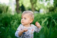 Free Serious Kid Sits In The Tall Grass. Portrait Royalty Free Stock Image - 221469646