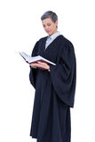 Serious lawyer reading law code Stock Photo