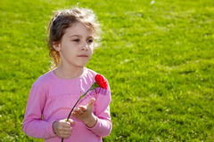 Serious little girl with carnation stands Stock Photo