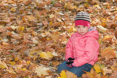 Serious little girl in the yellow leaves Stock Photos