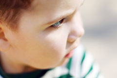 Serious little handsome boy looks at camera in park Stock Image