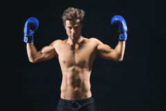 Serious male boxer showing his biceps. Fit confident young man is raising arms and flexing muscles. He is standing and wearing boxing gloves. Isolated Royalty Free Stock Photography