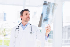 Serious male doctor examining xray Stock Images