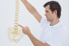 Serious male doctor with skeleton model Royalty Free Stock Images