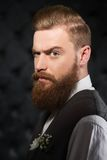 Serious man with beard and severe look Stock Photo