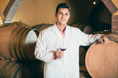 Serious man checking ageing process of red wine Royalty Free Stock Image