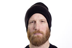 Serious man face. With red beard isolated on white background Stock Image