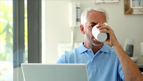 Serious man using his laptop while drinking a coffee. In the kitchen stock footage
