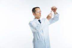 Serious medical worker examining blood sample Royalty Free Stock Image