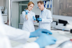 Serious medical workers standing opposite each other Royalty Free Stock Image