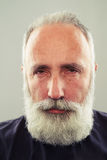 Serious middle-aged man Royalty Free Stock Photos