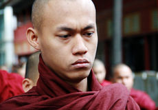 Serious Myanmar monk's portrait Royalty Free Stock Images