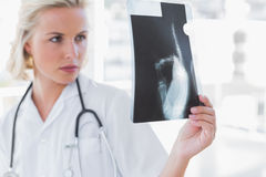Serious nurse examining a radiography Stock Images