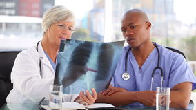 Serious nurse listening to a mature doctor. In a bright room stock video footage