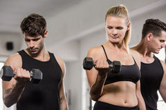 Serious people lifting barbell Stock Images