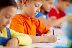 Serious pupil Royalty Free Stock Image
