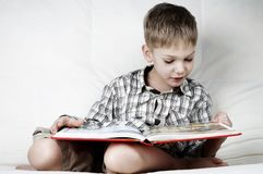 Serious reader Royalty Free Stock Image