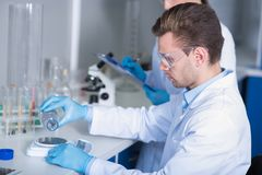 Serious responsible researcher working and weighing substance on scales. stock photo
