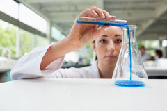 Serious science student pouring liquid Stock Images