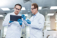 Serious scientist listening attentively to his assistant Royalty Free Stock Photography