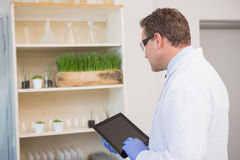 Serious scientist using tablet pc Stock Images