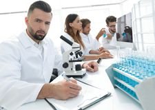 Serious scientists working in the laboratory Royalty Free Stock Photo