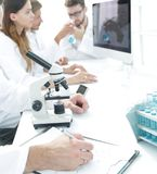 Serious scientists working in the laboratory Stock Photography