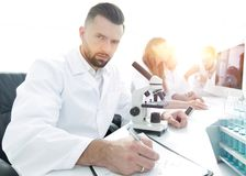 Serious scientists working in the laboratory Royalty Free Stock Images