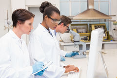 Serious scientists working together Royalty Free Stock Image