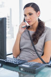 Serious secretary answering land line looking at computer screen Royalty Free Stock Photos