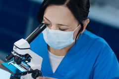 Serious skillful microbiologist using special equipment royalty free stock photos