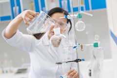 Serious smart biochemist working in the lab Royalty Free Stock Photos