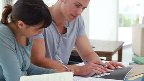 Serious students preparing their degrees together. In a bright room stock footage