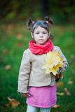 Serious toddler girl in the park. Small girl outdoor in the park with yellow leaves Stock Photos