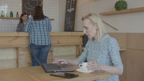 Serious woman blogger working on laptop in cafe stock video