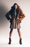 Serious woman in brown fur coat Royalty Free Stock Photography