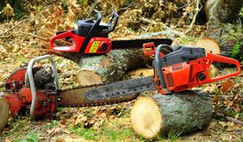Serious Woodcutting. Chainsaw Woodcutters Dream in choice of Saws to cut from smaller trees to the largest ones Royalty Free Stock Photography