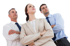 Serious work team posing together looking away Royalty Free Stock Image