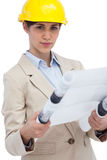 Serious young architect holding plan Stock Photos