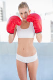 Serious young blonde model exercising with boxing gloves Royalty Free Stock Photos
