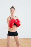 Serious young woman wearing red boxing gloves looking at camera Stock Photography