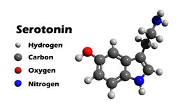 Serotonin 3D structure Stock Images