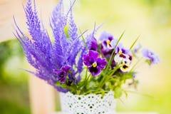 Serovie kwiaty Obraz Royalty Free
