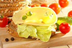 serowa kanapka Zdjęcie Royalty Free