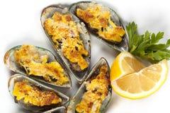 serowi mussels Fotografia Royalty Free