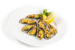 serowi mussels Obraz Stock