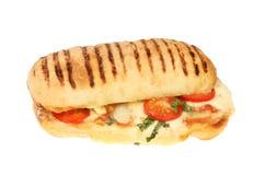 Serowy i pomidorowy panini zdjęcia royalty free